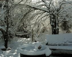 Sculpture Garden / Snow
