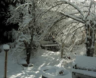 The Rocky Mountain English Country Sculpture Garden,