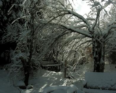 Arbor / The Rocky Mountain English Country Sculpture Garden