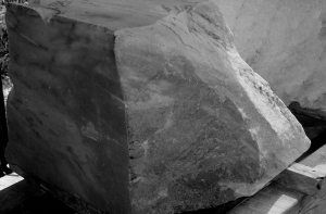 rough block, Terrible Lizard, Birdhaven Studio Workshop, Woody Creek, Colorado