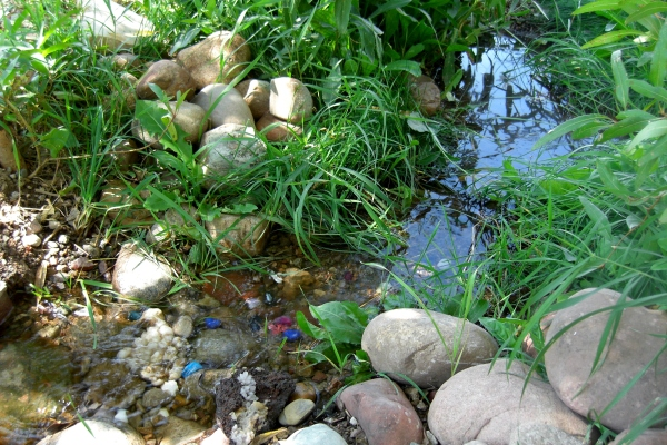 The 'English Country Garden' comes courtesy of the pristine waters of The Woody Creek itself.
