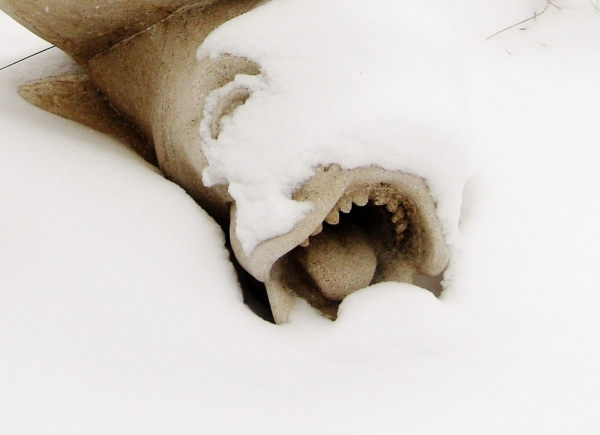 Sea Monster, Sculpture Garden / Snow