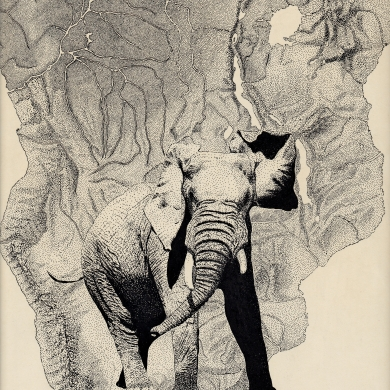 A Wild Elephant About To Be Shot, Pen and Ink, Martin Cooney