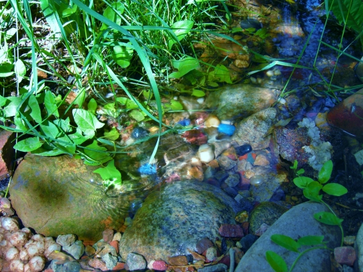 Woody Creek Water / The Sculpture Garden @ martincooney.com