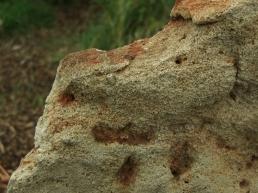 detail, Three Faces Standing Stone, Winterset Limestone, by Martin Cooney, Birdhaven Sculpture Garden, Woody Creek, Colorado