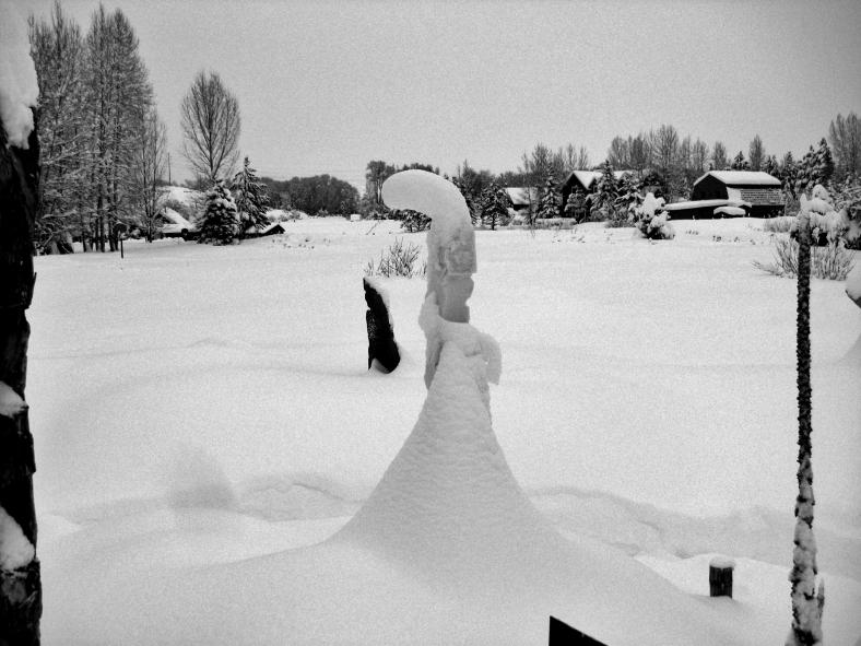 The Deep Winter Snowscape Garden Video Photo Tour 2014 02 04