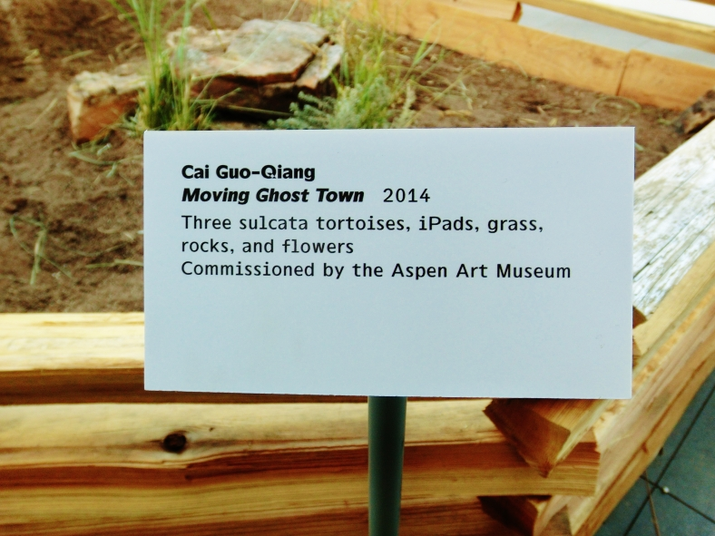 Aspen Art Museum 24-Hour Grand Opening, 6:00 am Sunday August 10, 2014