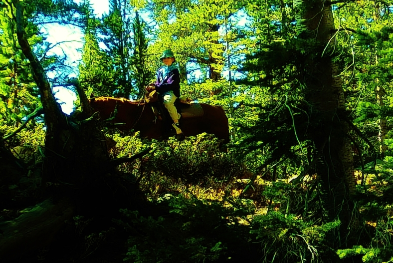 Girl Horseback Rider at Sound Wave Lake, Two day hikes from Uncle Bud's Hut, Late September, Colorado, 2014