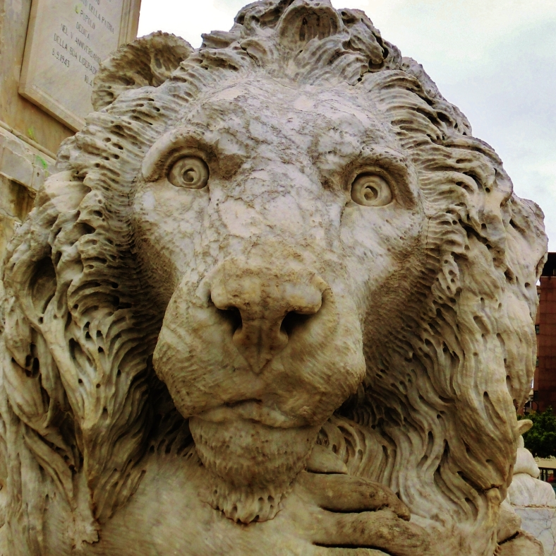 The Curious One, The Lions of Massa, Italy