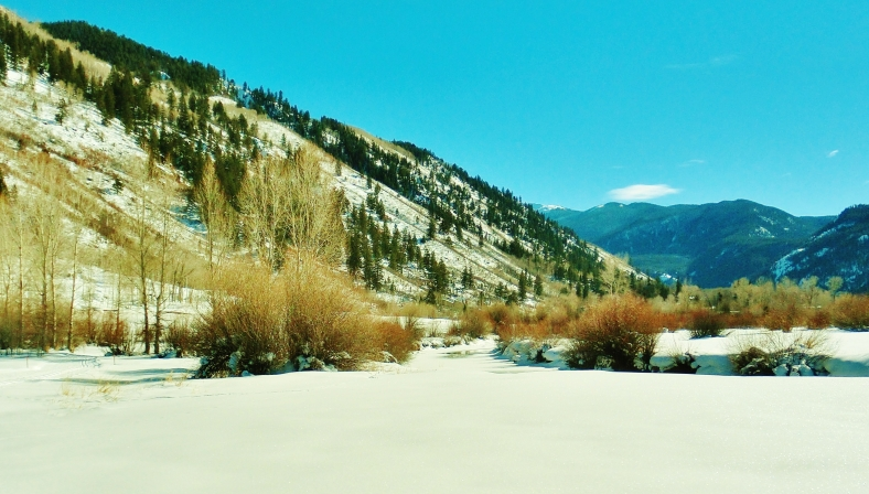North Star Nature Preserve, Aspen CO, by MARTIN COONEY