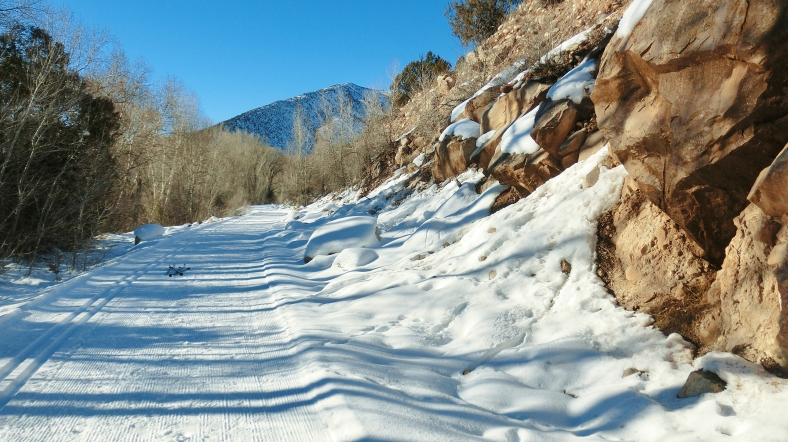 Rio Grande Rail-Bed Trail, Woody Creek CO by MARTIN COONEY