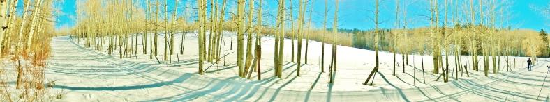 Owl Creek Road Trail, Aspen/Snowmass Village Express. MARTIN COONEY