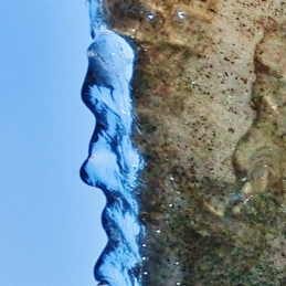 Pareidolia, Ice Sculpture, Bird Mountain Fountain, by MARTIN COONEY, Woody Creek CO