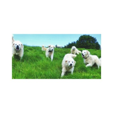 Five Angry Italian Sheepdogs, Wrapped Canvas Print, 18 x 9, center