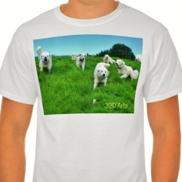 Five Very Angry Italian Sheepdogs, Men, Tall Hanes T-Shirt, Front, Model, Close-up, White