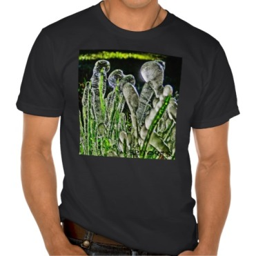 Ice Migration, Men, American Apparel Organic T-Shirt, Front, Black