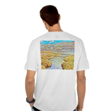 Roaring Fork Headwaters No. 7 Men's Mesh Tee back