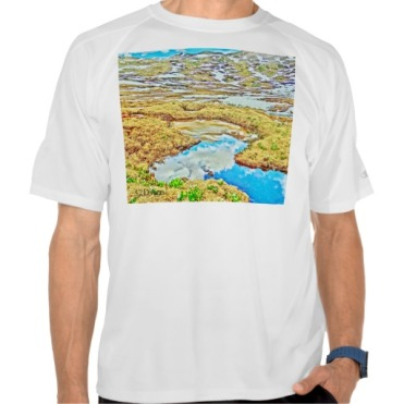 Roaring Fork Headwaters No. 7 Men's Mesh Tee