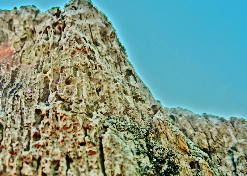 Birdhaven Mountain