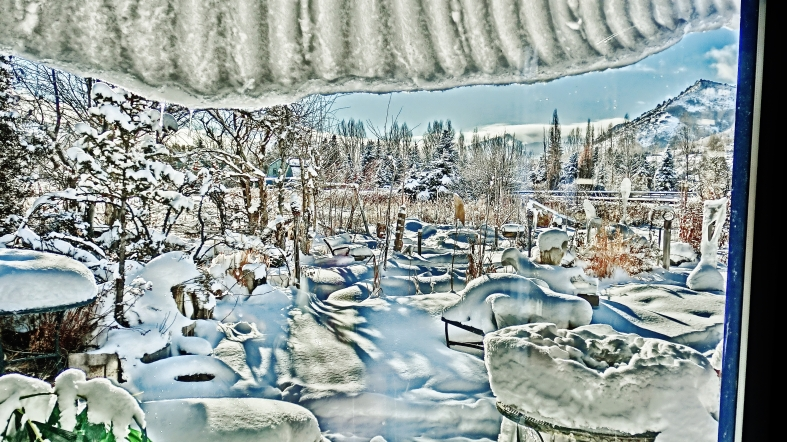 Boxing Day Morning, Sculpture Garden Snowy Window View