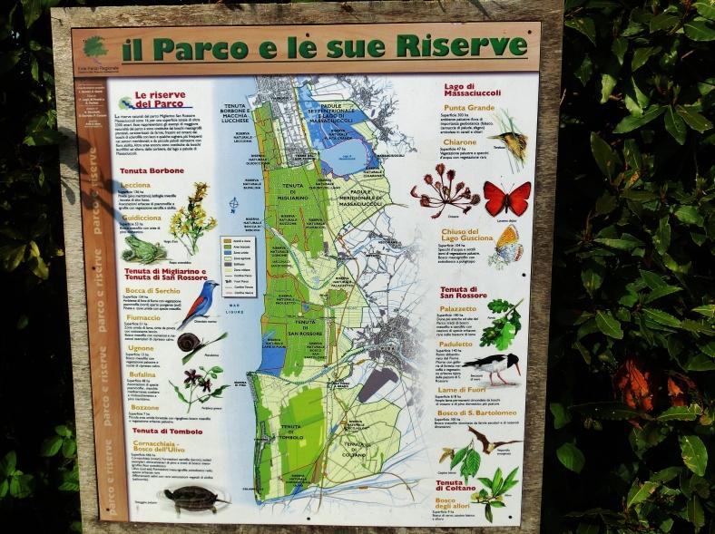 Parco e le Sue Riserve, Lago di Massaciuccoli, Countryside Around Pisa