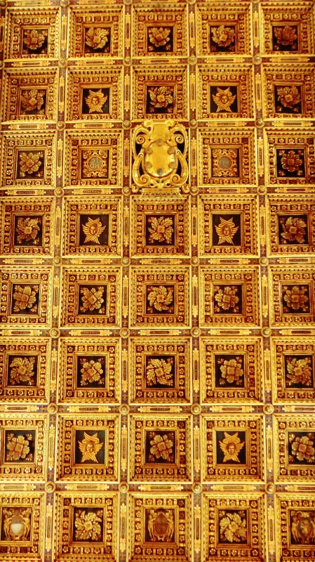 Ceiling of Pisa Cathedral, Tuscany, Italy