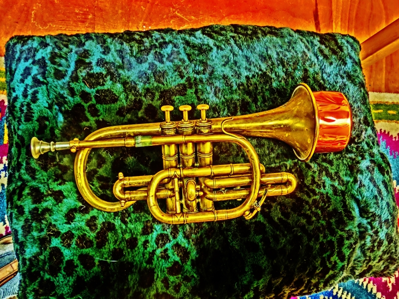 "Bresson Brevette, solid brass, Harmon ""wow-wow"" Mute. Much prized cornet of Martin Cooney."