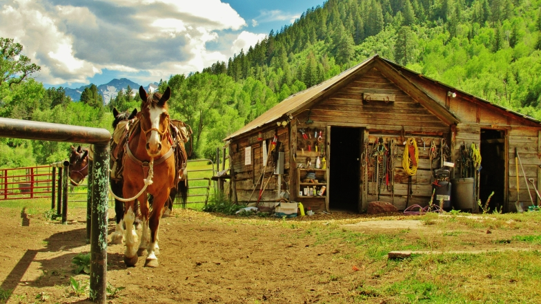 Horse Corral, Avalanche Outfitters, Redstone, Along The Aspen Marble Detour